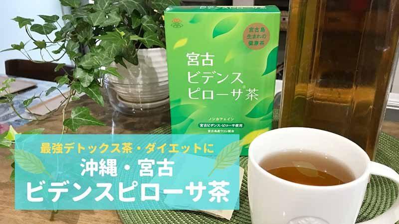 沖縄・宮古ビデンス・ピローサ茶