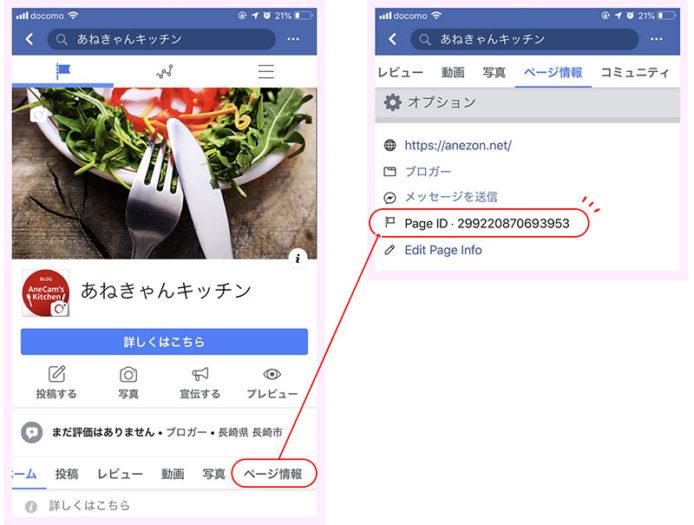 IDを調べたい自分のFacebookページへ移動し、ページ情報をタップ