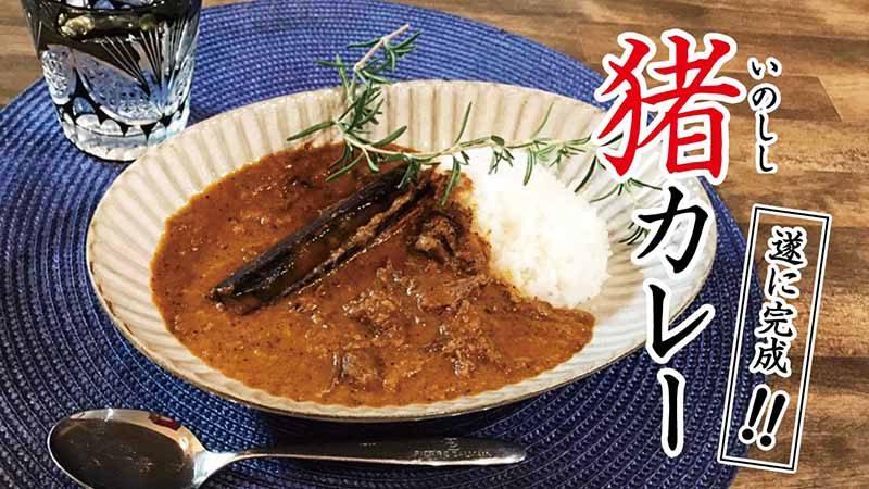 レシピ【イノシシカレー】初めてのジビエカレー・スパイス香るホロホロ肉が絶品!